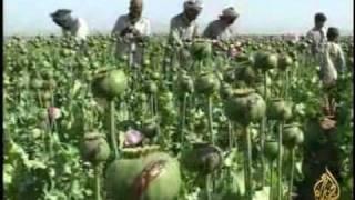 getlinkyoutube.com-أفغانستان تتصدر قائمة الدول المنتجة للمخدرات بالعالم
