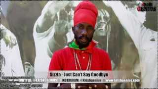 Sizzla - Just Can't Say Goodbye