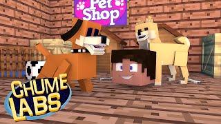 getlinkyoutube.com-Minecraft: ADOTAMOS UM CACHORRO! (Chume Labs 2 #67)