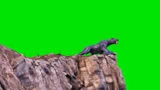 getlinkyoutube.com-Green Screen Monster Cougar Jump Attack - Footage PixelBoom