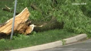 Violentas tormentas dejaron como saldo varios destrozos en Kansas City