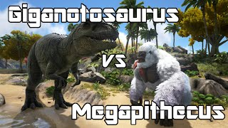 getlinkyoutube.com-ARK: Survival Evolved - Giganotosaurus vs Megapithecus - Dino Battle