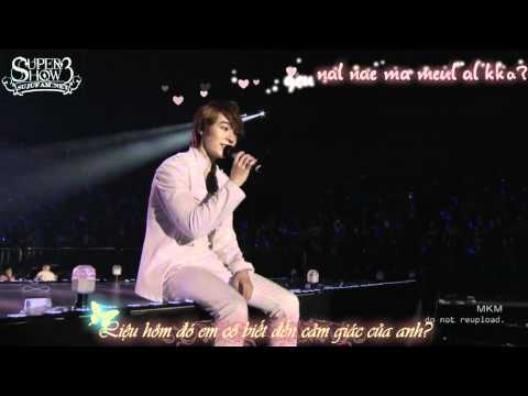 [SJF Vietsub + kara] Super Junior - Super Show 3 in Japan - Good person (OFFICIAL)
