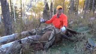 getlinkyoutube.com-Leon's 2014 Colorado Elk Hunt