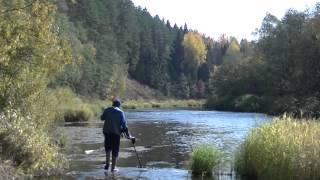 getlinkyoutube.com-В поисках золота! Путешествие по реке.