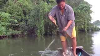 getlinkyoutube.com-ปลาติดเบ็ดแม่น้ำแควใหญ่