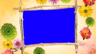 Frem Croma Flower  Video Background Footage    Free Download HD