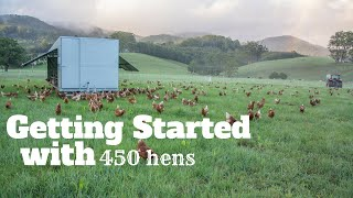 getlinkyoutube.com-Getting Started with 450 Hens