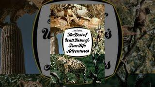 getlinkyoutube.com-The Best of Walt Disney's True Life Adventures