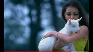 getlinkyoutube.com-Uss Ladki Pe Dil Aaya   Naam Gum Jaayega 2005 Special Compilation   YouTube