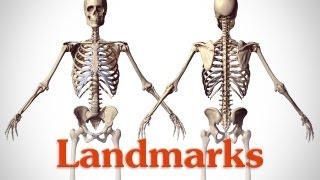 Landmarks of the Human Body