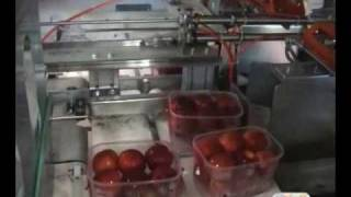 getlinkyoutube.com-Automated Fruit packing and tray filling