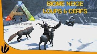 getlinkyoutube.com-[FR] ARK: Survival Evolved - Biome neige, Loups (Dire Wolf) & Cerfs (Megaloceros)