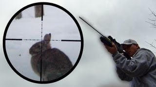 getlinkyoutube.com-Arrow Gun Rabbit Hunt with FX Verminator and G5 Small Game Head (SGH)