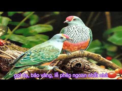 Chim vành khuyên - Nhạc thiếu nhi [odkhi]
