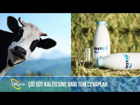 Çiğ Süt Kalitesine Dair Tüm Cevaplar / Çiftçi TV