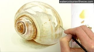 getlinkyoutube.com-How to paint a realistic shell in watercolor by Anna Mason