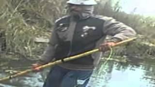 الصيد بالكهرباء في المطرية