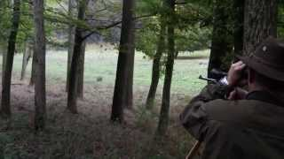 getlinkyoutube.com-Die AmmaLa Erfahrung in Gyulaj: Jagd auf höchstem Niveau