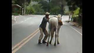 getlinkyoutube.com-bêbado tentando subir no cavalo