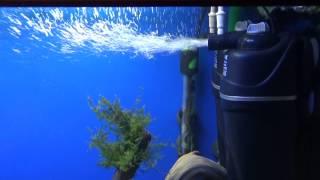 getlinkyoutube.com-Регулировка подачи воздуха в аквариумный фильтр