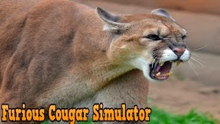 getlinkyoutube.com-Furious Cougar Simulator By Glufun Games Simulation - iTunes/Android