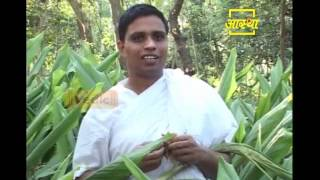 getlinkyoutube.com-Ayurvedic use of Turmeric (Haldi) | Acharya Balkrishna