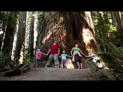 Family standing together by giant tree trunk