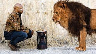 Heart of A Lion - Alex Boye' width=