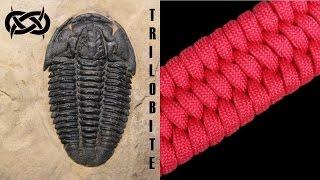 getlinkyoutube.com-Beginner Paracord: How to Make a Trilobite Paracord Bracelet