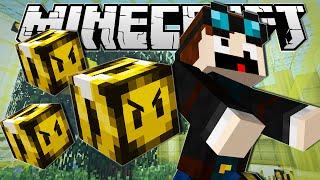 getlinkyoutube.com-Minecraft | GETTING STUNG BY A BEE!! | Custom Command