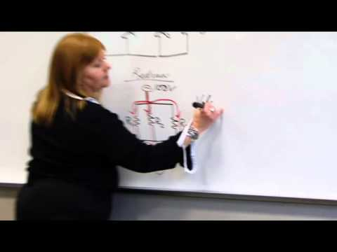 Series & Parallel Circuits & Ohm's Law Physics, part 3 - Eeris Fritz