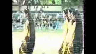 getlinkyoutube.com-Gadis-gadis berambut panjang pembawa api PON (dan Wulan dirumahnya)