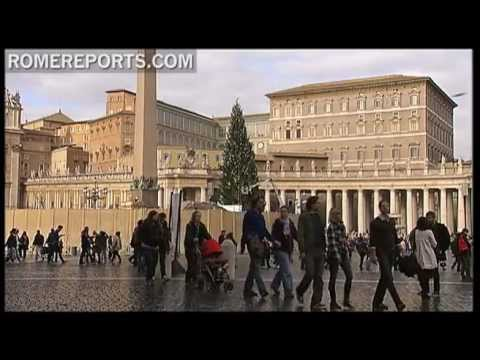 Vatican's Christmas tree decorated in St  Peter's Square