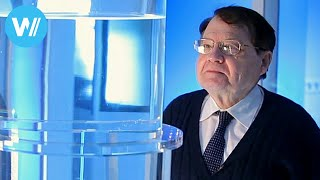 getlinkyoutube.com-Water Memory (Documentary of 2014 about Nobel Prize laureate Luc Montagnier)