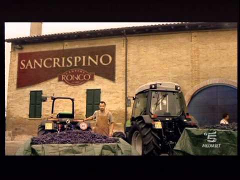 Ronco San Crispino spot 2011