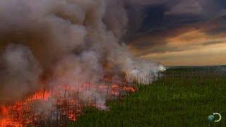 getlinkyoutube.com-Filming a Raging Forest Fire | North America