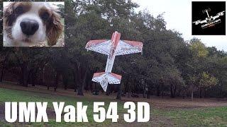 getlinkyoutube.com-E-flite UMX Yak 54 3D | Review and Flight