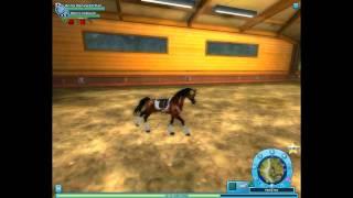getlinkyoutube.com-StarStable:How To Train Your Horse