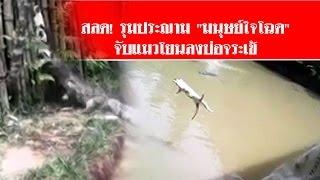 """getlinkyoutube.com-คลิปสุดสลด! รุมประณาม """"มนุษย์ใจโฉด"""" จับแมวโยนลงบ่อจระเข้ #สดใหม่ไทยแลนด์ ช่อง2"""
