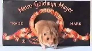 getlinkyoutube.com-MGM Lion