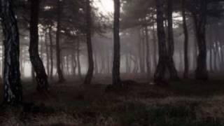 getlinkyoutube.com-THE CURE - A Forest (lyrics)
