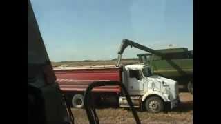 getlinkyoutube.com-Канадские фермеры на уборке зерновых