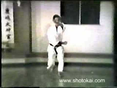 Heian Shodan Shotokai Karate-do
