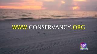 Mayela Rosales se fue hasta el Conservancy SWFL para conocer sobre tortugas marinas