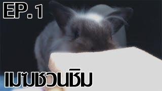 getlinkyoutube.com-[เมฆชวนชิม Remake] แซนวิชแอดวานซ์