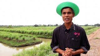 """getlinkyoutube.com-เศรษฐีเกษตร 10/5/58 : """"กายกานต์"""" สวนตะไคร้เงินล้าน"""