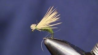 getlinkyoutube.com-Elk Hair Caddis, Beginner's Fly Tying Series, Episode 12, Holsinger's Fly Shop