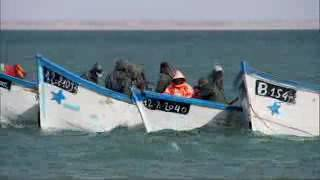 getlinkyoutube.com-Omar EL AISSAOUI -Pêche surfcatsing Dakhla