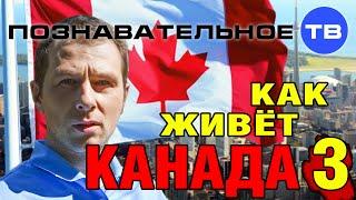 getlinkyoutube.com-Как живёт Канада 3 (Познавательное ТВ, Александр Могутнов)